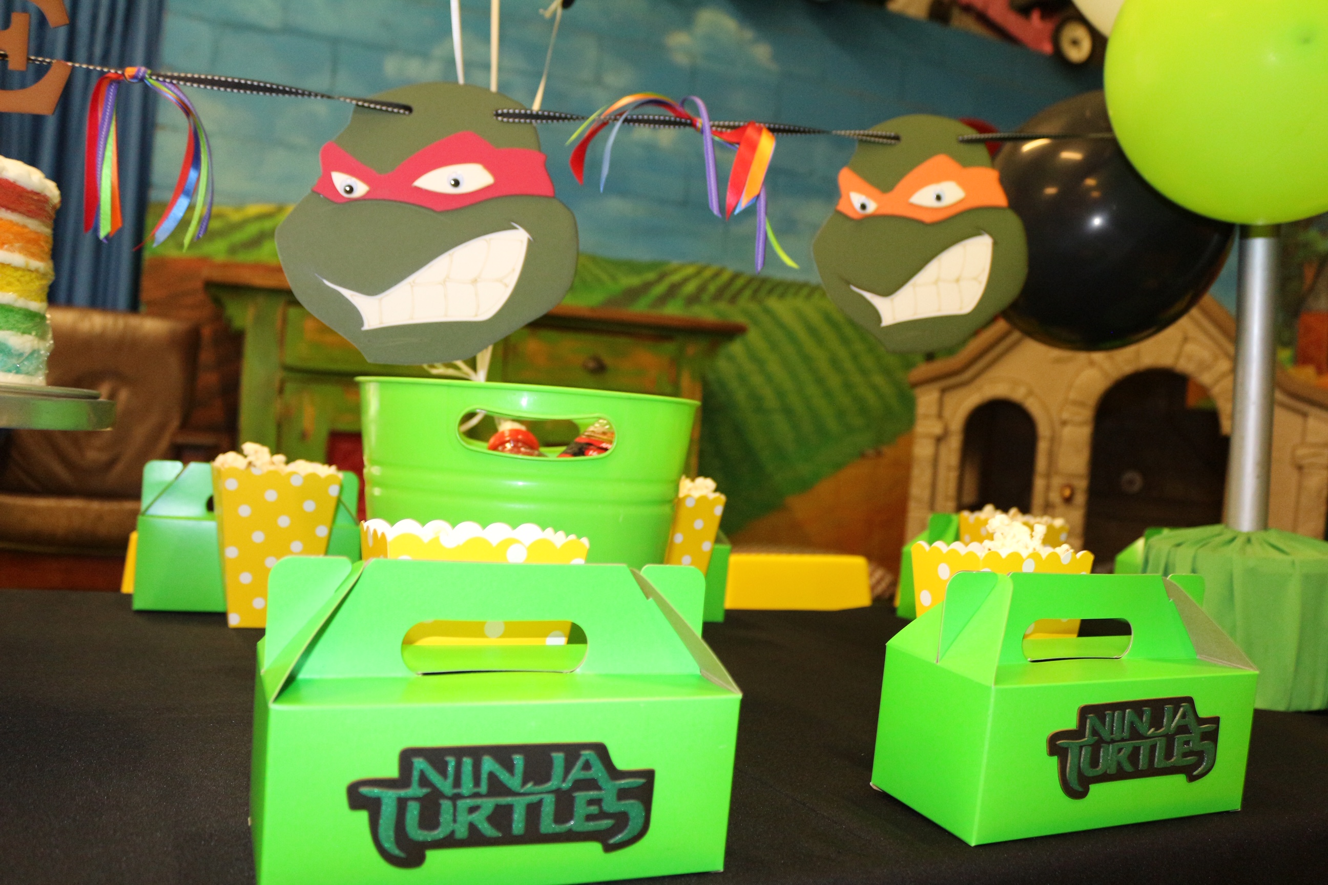 ninja turtles bugz playpark